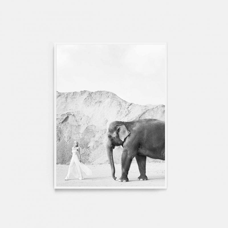 Alone with Elephant